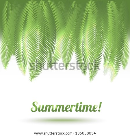 Vector leaves of palm on sun light background - stock vector
