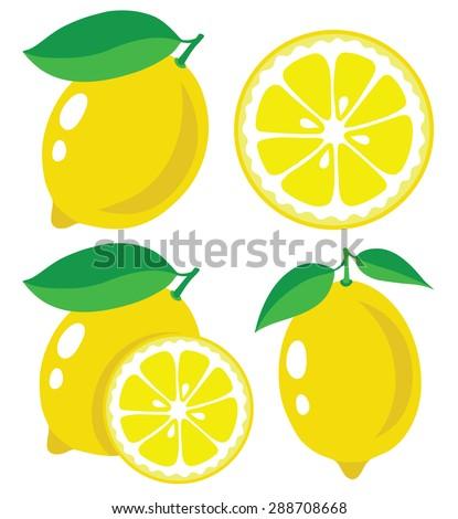Vector lemons. Fresh lemon fruits, collection of vector illustrations - stock vector