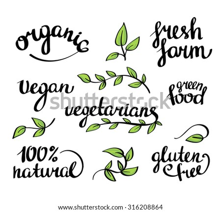 Vector lettering -  organic natural food, vegan and vegetarians menu