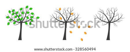 Vector life cycle of trees. Nice ilustration of phases of trees - green tree, shed its leaves and tree without leaves.  - stock vector