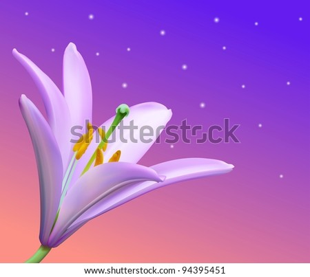 Vector Lily Background