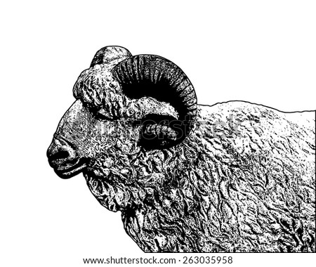 Vector lineart of a ram.  - stock vector