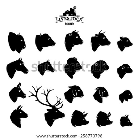 Vector Livestock Icons Isolated on White - stock vector