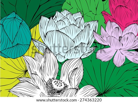 Vector lotus flower drawings background graphics stock vector vector lotus flower drawings for the background graphics mightylinksfo