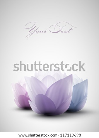 vector lotus flowers - stock vector
