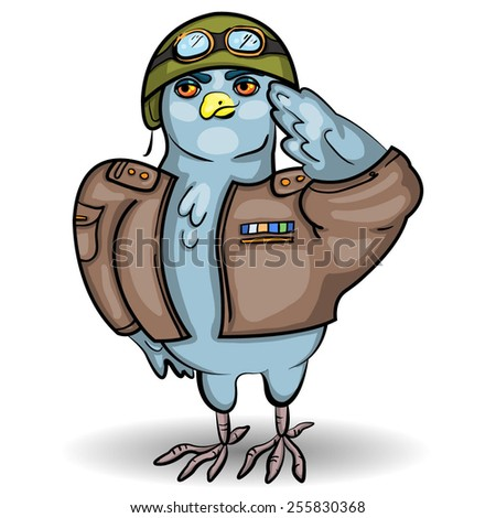 Pigeon Cartoon Stock Images Royalty Free Images Amp Vectors