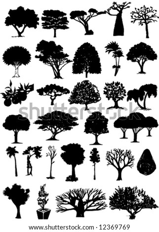 vector miscellaneous trees