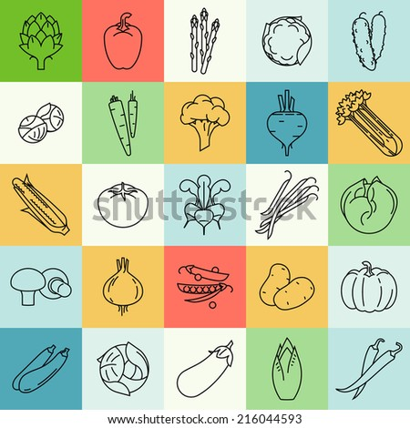Vector modern flat design vegetables and green salads line square colorful icons | Set of contour vegetable clip art featuring endive, beetroot, brussels sprouts, zucchini, iceberg lettuce, and more