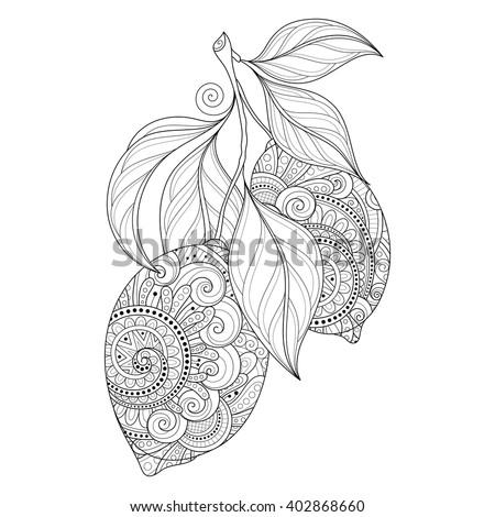 Vector Monochrome Contour Branch with Ornate Lemons and Decorative Leaves. Hand Drawn Decorative Citrus - stock vector