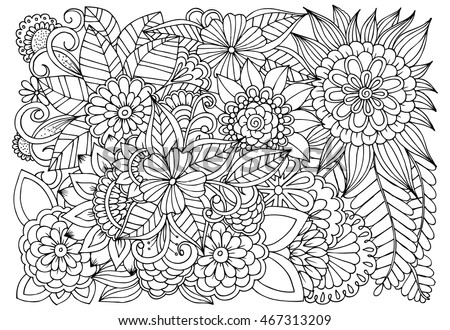 Vector Monochrome Floral Illustration Wildflowers In Black And White Coloring Page For Book