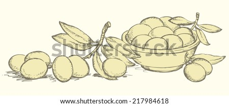 Vector monochrome line drawing style of antiquity engravings. Still life of bowl with fresh fruits and twig of ripe olives with leaves on olivaceous backdrop - stock vector