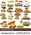 Vector mushrooms, some are eatable and some are poison. - stock photo