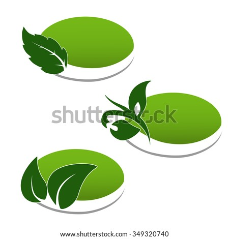 Vector natural symbols, nature bio icon with leaf and plant, oval sticker for eco product  - stock vector
