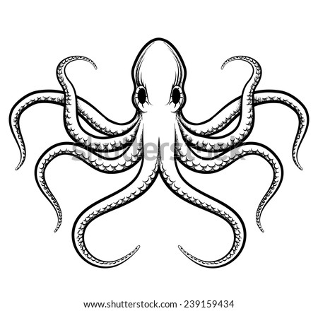 vector octopus illustration beautifully painted octopus black lines on a white background