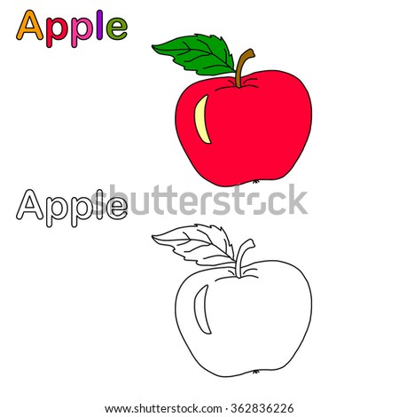 vector of apple coloring apple - Apple Coloring