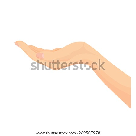Vector of Beautiful female open hand isolated on a white background