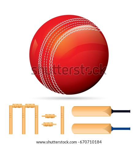 Vector of cricket equipment isolated on white background.
