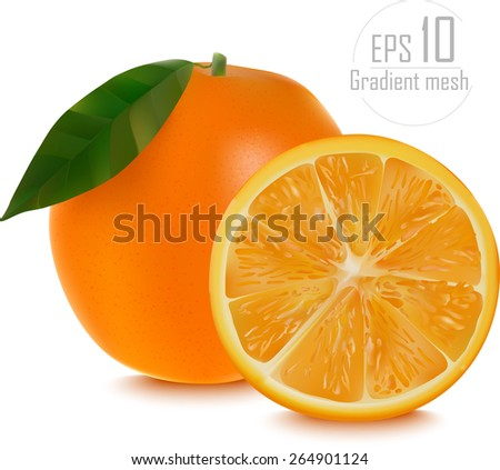 Vector of fresh ripe oranges with leaves. EPS 10 - stock vector