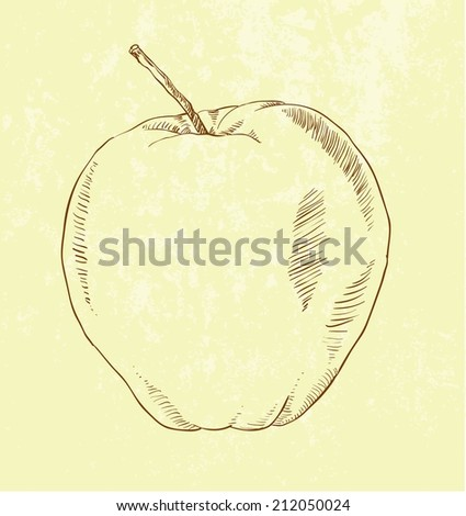 vector of highly detailed hand drawn apple. - stock vector