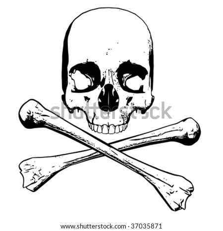 Vector of human skull - three separate parts - stock vector