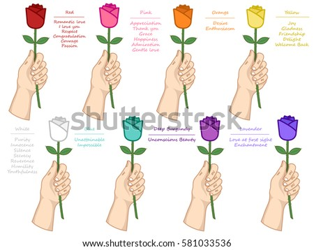 Vector Set Different Color Roses Meaning Stock Vector Royalty Free