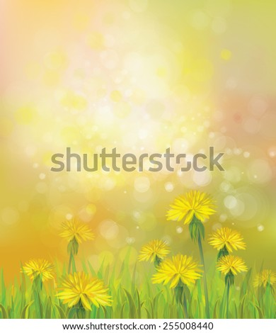 Vector of spring background with yellow dandelions. - stock vector