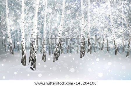 Vector of winter snowy landscape, birch forest. - stock vector