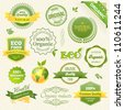 Vector Organic Food, Eco, Bio Labels and Elements. Vector illustration. - stock vector