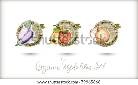 Vector organic labels set. Very detailed hand drawn with high quality. - stock vector