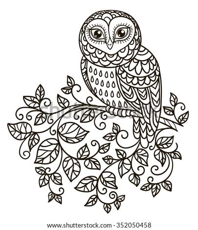 cartoon owl stock photos images royalty free cartoon owl