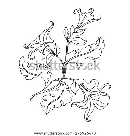 Vector outline drawing flower black white stock vector hd royalty vector outline drawing flower black and white flower mightylinksfo Gallery