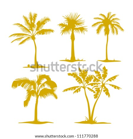 Vector palm contours isolated on white. Illustration set - stock vector