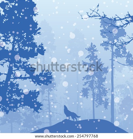 Vector panorama of wild coniferous winter forest with pines - stock vector