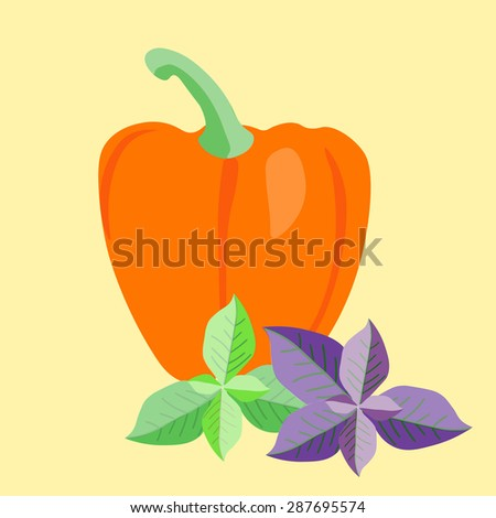 Vector paprika with basil leaves. Sweet  pepper . Cooking  ingredients vector elements. Italian cuisine background. - stock vector
