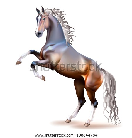 Vector photo-realistic silver bay horse rearing up isolated on white background - stock vector