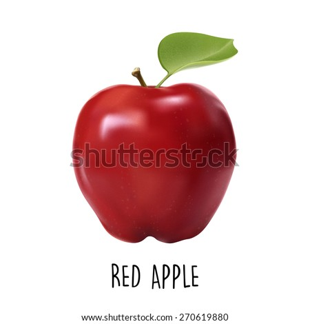 Vector photorealistic isolated red apple on a white background, vitaminic fruit, symbol of freshness and health - stock vector