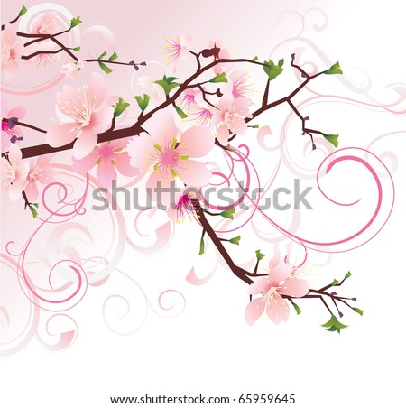 vector pink background with flourishes cherry tree blossoming brunch - stock vector