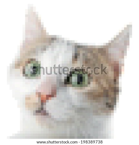 Vector pixel art cat - stock vector
