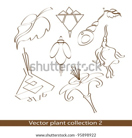 Vector plant collection - stock vector