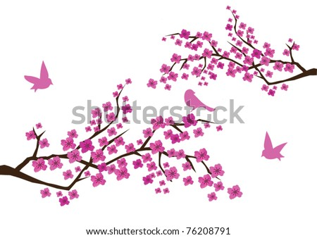 vector plum blossom with birds