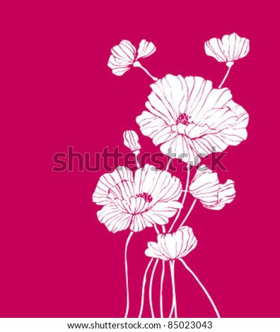 Vector poppies white on pink - stock vector