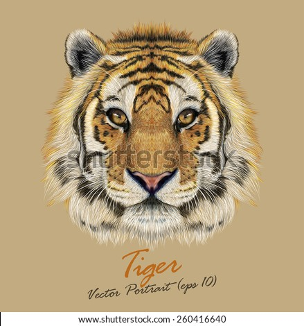 Vector Portrait of a Tiger. Beautiful face big cat. - stock vector
