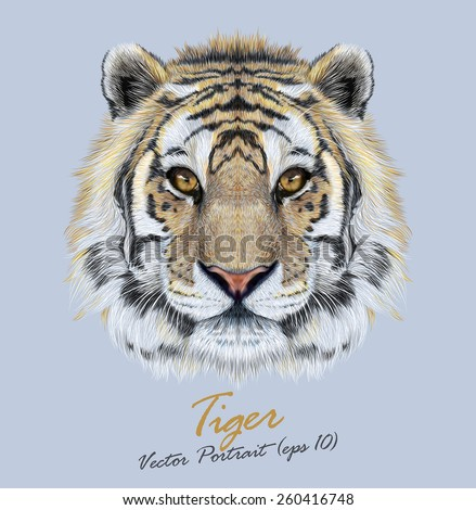 Vector Portrait of a Tiger on blue background. Beautiful face of big cat. - stock vector