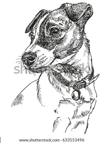 vector portrait dog jack russel terrier stock vector 633553496 shutterstock. Black Bedroom Furniture Sets. Home Design Ideas