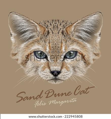Vector Portrait Sand Dune Cats. Small Wild Cat living in the desert. - stock vector
