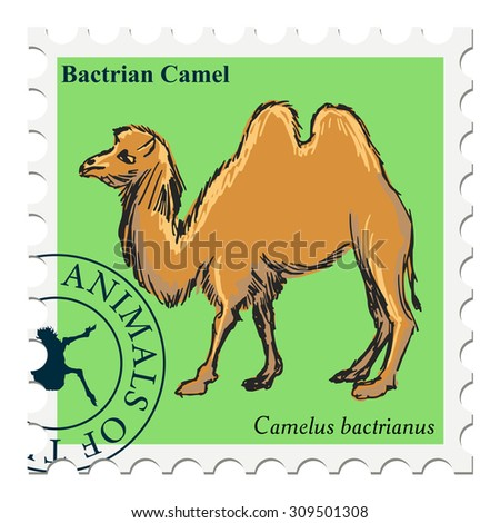vector, post stamp with camel - stock vector