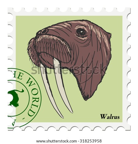 vector, post stamp with walrus - stock vector