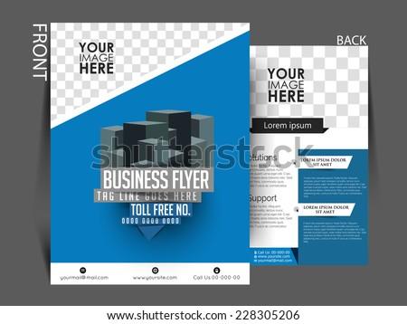 Vector Professional Flyer Business Brochure Template Stock Vector