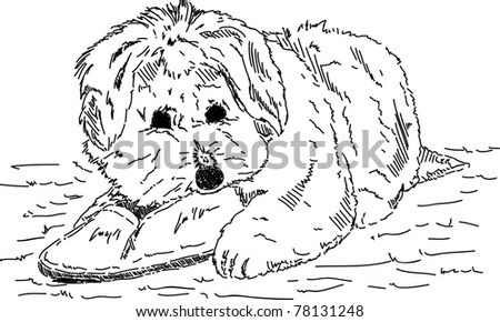 vector - Puppy dog with shoes , hand draw - stock vector