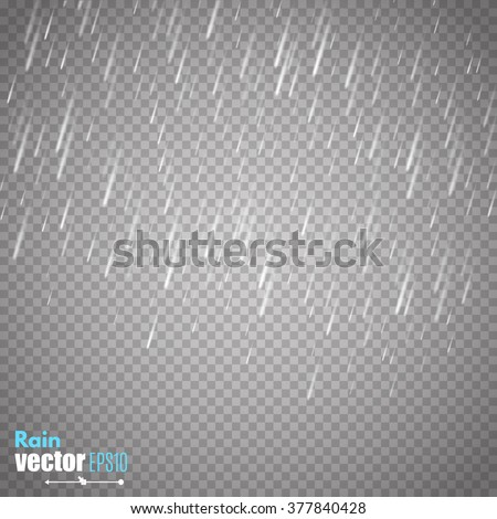 Vector rain isolated on transparent background.  - stock vector